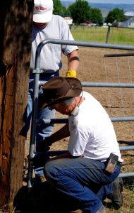 4H Arena Workers (10)