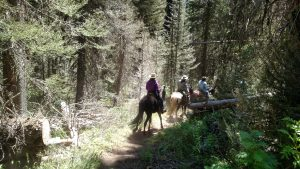 Kennally CC Trail Ride (36)