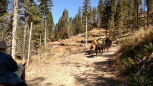 boulder-jug-mt-trail-ride-39